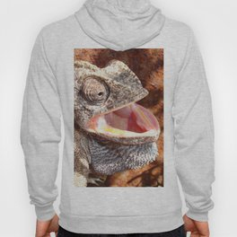 The Laughing Chameleon Hoody