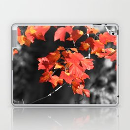 Cold Fall Laptop & iPad Skin