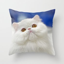 Young white cat Throw Pillow