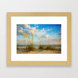 Sea Oats along the Beach Framed Art Print