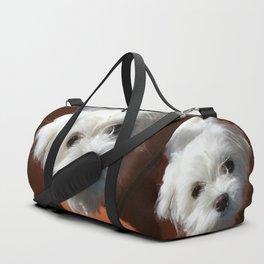 Cute Maltese asking for a treat Duffle Bag