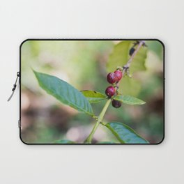 Coffee Plant Laptop Sleeve