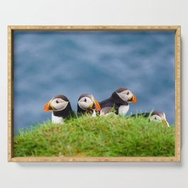 The Puffins of Mykines in the Faroe Islands IX Serving Tray