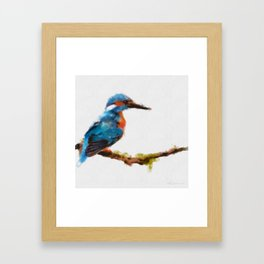 Kingfisher - watercolor (signed) Framed Art Print