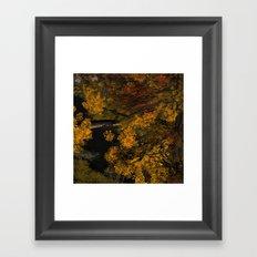 Autumn Leaves and Stream Framed Art Print