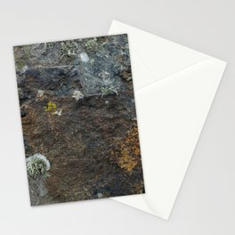 Natural Coastal Rock Texture with Lichen and Moss Stationery Cards