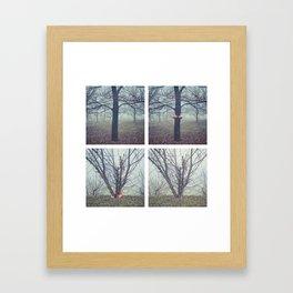 foggy days in the park Framed Art Print