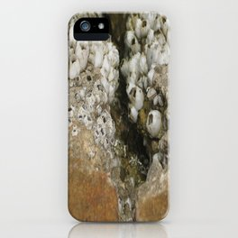 barnicle growth iPhone Case