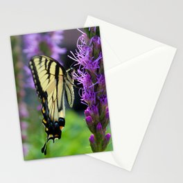 Swallowtail Summer Stationery Cards