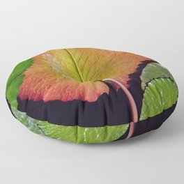 Nymphaea Tropic Sunset Lily Pad Leaves Floor Pillow