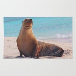 A Seal Sunbathe Rug
