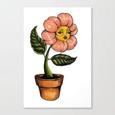 wildwood flower Canvas Print
