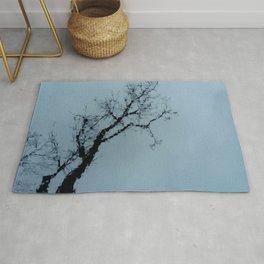 Tree, sky and water. Rug