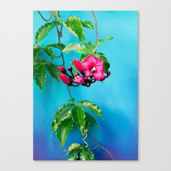 Tropical Blue 4 Canvas Print