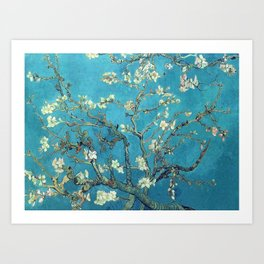 Branches with Almond Blossom - Vincent van Gogh Art Print