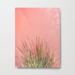 Green on Pink | Mexico travel photography print | Botanical San Miguel de Allende Metal Print