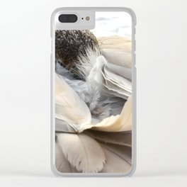 Young Trumpeter Swan by Teresa Thompson Clear iPhone Case