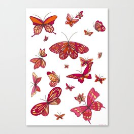 Butterfly Spread Canvas Print