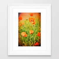poppies Framed Art Prints featuring POPPIES by Teresa Chipperfield Studios