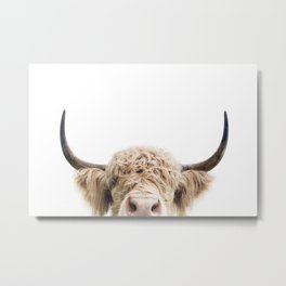 Peeking Highland Cow Metal Print