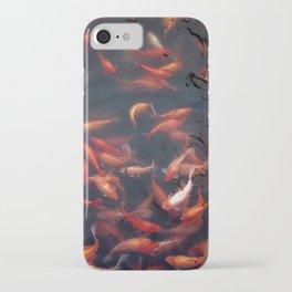 NATURE - FISH - WATER - ANIMALS iPhone Case
