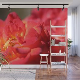 Bright Red Flower Wall Mural