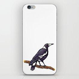 Australian Magpie iPhone Skin