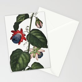 The Winged Passion-Flower illustration Stationery Cards