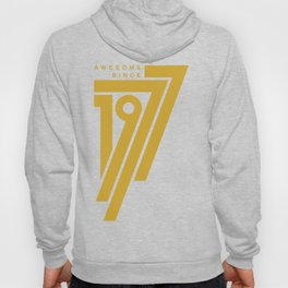 Awesome Since 1977 Hoody