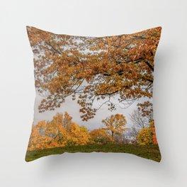 Brookline, Summer street view of fall Throw Pillow
