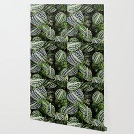 Leaf Patterns #2 Wallpaper