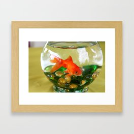 Fish Bowl Framed Art Print