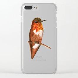 Allen's Hummingbird Clear iPhone Case