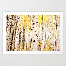 The Trees in Color Art Print