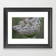 Wildling - No. 2 Framed Art Print