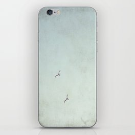 Together in Flight iPhone Skin