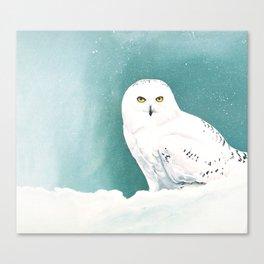 Arctic Eyes Canvas Print