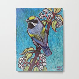 Golden Winged Warbler Male Metal Print