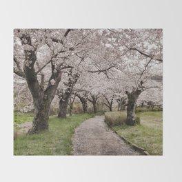 Row of cherry blossom trees Throw Blanket