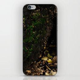 Bark of Tree iPhone Skin
