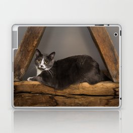 Cat on tree Laptop & iPad Skin