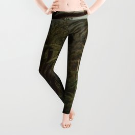 Ferntree and Palms, Tropical Gully landscape portrait by Eugene von Guerard Leggings