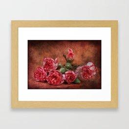 Carnation flowers Framed Art Print