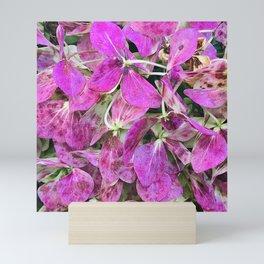 Pink Magenta Flower Petals Scattered Across the Ground Mini Art Print