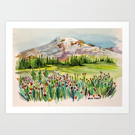 Mount Rainier National Park Art Print