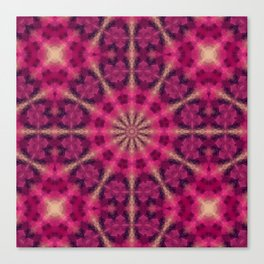 Kaleidoscope . Raspberry magic. Canvas Print