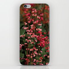 Little Red Flowers iPhone & iPod Skin
