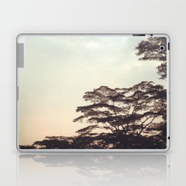 the faint sunset Laptop & iPad Skin
