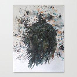 Harker The Tibetan Terrier Canvas Print