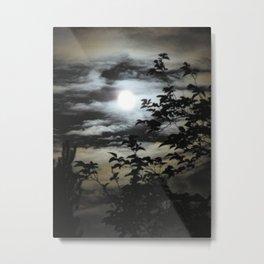 Zooma Moon Metal Print